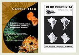 Club Conchylia Informationen